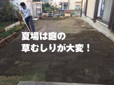 福山市草むしり庭